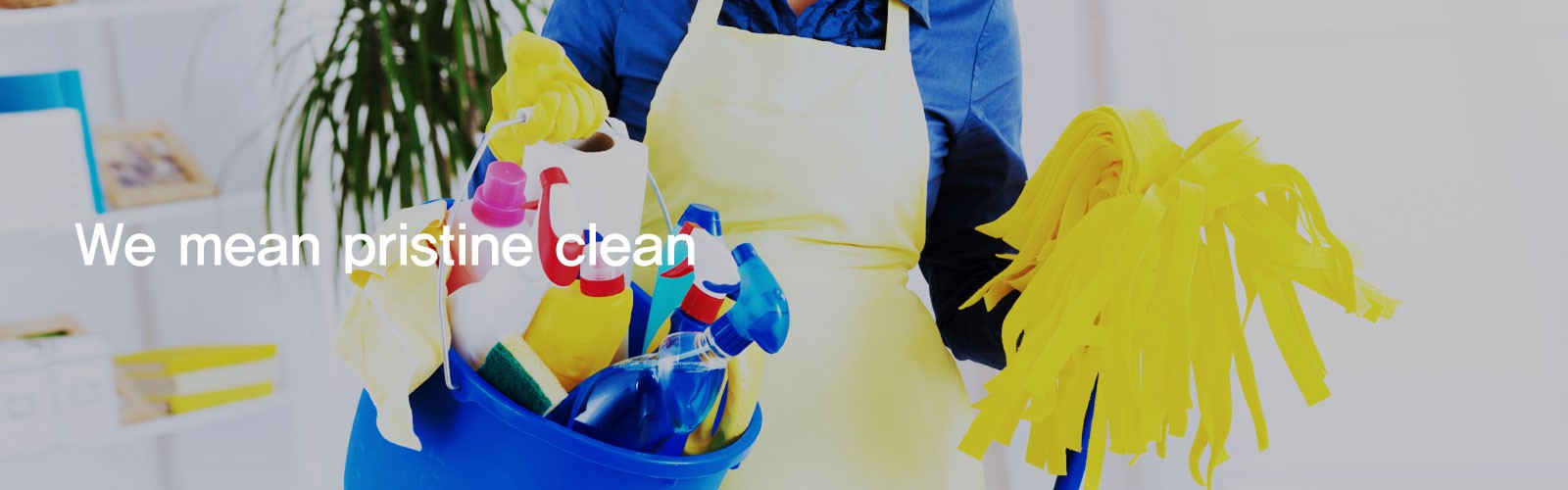 Home Cleaners Sydney